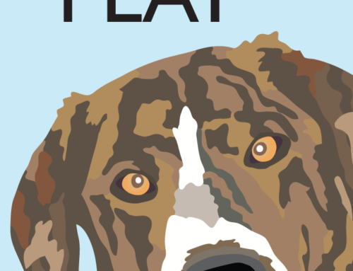 Sirius Play Dog Training and K9 Nose Work (R)