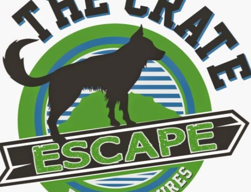 The Crate Escape On Hudson
